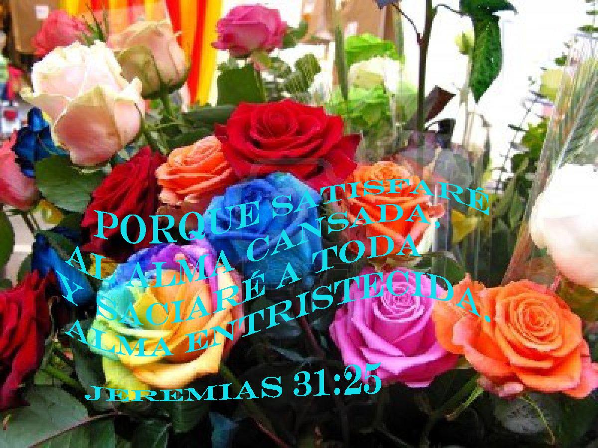 17 Imagenes Cristianas Con Rosas Imagenes Cristianas