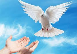Imágenes Cristianas Free (17)